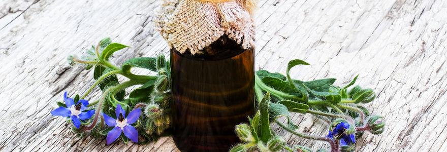 huile de bourrache protéger la santé de la peau